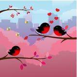 Romantischer Baum mit inlove Paarvögeln stockfotos
