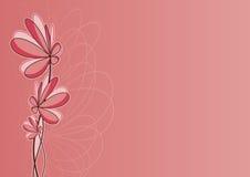 romantischer Blumenhintergrund Lizenzfreie Stockbilder