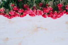 Romantischer Blumenrosenrahmen-Weinlesehintergrund Lizenzfreie Stockfotografie
