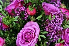 Romantischer Blumenstrauß mit purpurroten Rosen Stockfoto