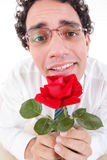 Romantischer dummer Mann in der Liebe, die Rotrose hält Stockbild