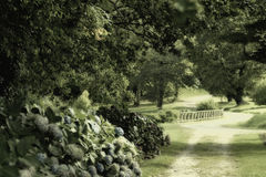 Romantischer Garten Lizenzfreie Stockfotos