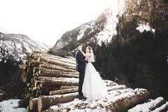 Romantischer Heiratsmoment, Paar von Jungvermählten lächelndes Porträt-, Braut- und Bräutigamumarmen stockfotografie