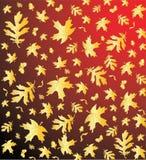 Romantischer Herbstnaturhintergrund Lizenzfreie Stockfotografie