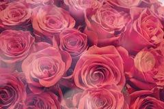 Romantischer Hintergrund eines Blumenstraußes des Rotes stockfotografie