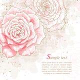 Romantischer Hintergrund mit rosafarbenen Rosen Stockfotos