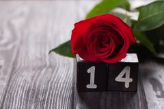 Romantischer Hintergrund mit Rotrose auf hölzerner Tabelle, Draufsicht Lizenzfreies Stockfoto