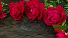 Romantischer Hintergrund mit Rotrose auf hölzerner Tabelle, Draufsicht stock footage