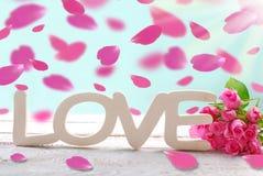 Romantischer Liebeshintergrund mit den fallenden rosafarbenen Blumenblättern Stockfoto