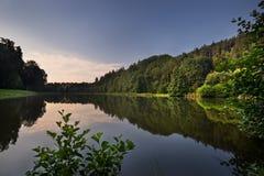 Romantischer Morgen in dem Teich Lizenzfreies Stockbild