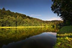 Romantischer Morgen in dem Teich Stockbild