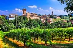 Romantischer Rebweg mit mittelalterlichen Schlössern in Emiglia Romagna stockbild