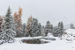 Romantischer schneebedeckter See lizenzfreie stockfotos