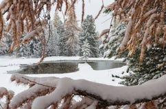 Romantischer schneebedeckter See stockfoto