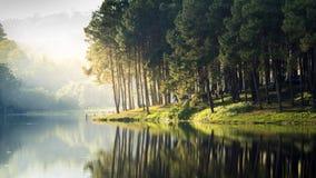 Romantischer See Stockbild