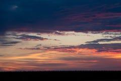 Romantischer Sonnenuntergang mit schwarzem Grasschattenbild Lizenzfreie Stockfotos