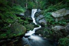 Romantischer Wasserfall innerhalb des forrest Stockfotos