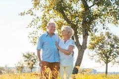 Romantisches älteres Paarhändchenhalten beim in die Landschaft zusammen gehen stockfotografie