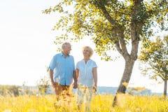 Romantisches älteres Paarhändchenhalten beim zusammen gehen lizenzfreies stockfoto