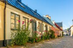 Romantisches altes Haus mit Stockrosen auf der Pflasterung stockfotografie