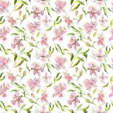 Romantisches Aquarell Alstroemeria-Blumenmuster Lizenzfreies Stockbild
