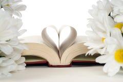 Romantisches Buch Lizenzfreie Stockbilder