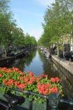 Romantisches Foto von Amsterdam in Netherland Lizenzfreie Stockfotos