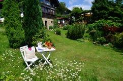 Romantisches Garten Picknick stockbilder