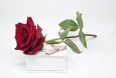 Romantisches Geschenk Blumen und Schmuck Stockfotos