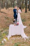 Romantisches Herbstkiefern-Wald-picknick des glücklichen gerade verheirateten Paars, das ihre Heirat feiert Lizenzfreie Stockfotos
