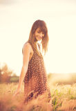 Romantisches Modell in Sun-Kleid auf dem goldenen Gebiet bei Sonnenuntergang Lizenzfreie Stockfotos