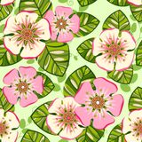 Romantisches nahtloses mit Blumenmuster Lizenzfreie Stockfotografie