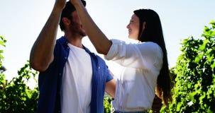 Romantisches Paartanzen an einem Weinberg stock footage
