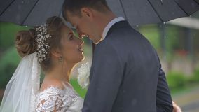 Romantisches Seitenporträt der glücklichen attraktiven Paare der Jungvermählten in der zart reibenden Liebe riecht unter schwarze stock footage