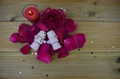 Romantisches Wintersaisonphotographiebild mit roten Rosen und einer brennenden Kerze mit Eibischen formte als schlafender Schneem stockfoto
