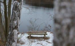 Romantisk bänk i naturen, dag för St-valentin` s Royaltyfri Foto