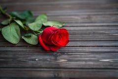 Romantisk bakgrund med den röda rosen på den wood tabellen, bästa sikt Royaltyfri Fotografi