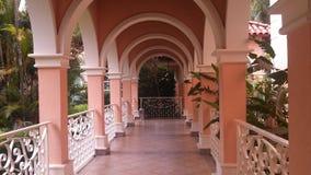 Romantisk bana bland rosa pilaster Royaltyfri Foto
