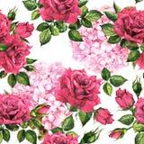 Romantisk blom - vanlig hortensia, blommor för röda rosor Blom- bakgrund för sömlös sommar vattenfärg royaltyfri illustrationer