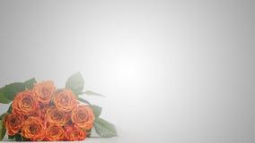 Romantisk bukett av röda rosor med copyspace Arkivfoto