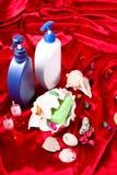 Romantisk dusch Arkivfoto