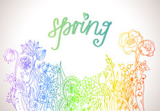 Romantisk färgrik blommabakgrund Arkivbilder