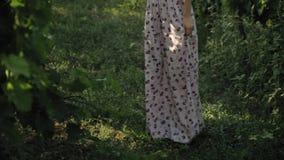 Romantisk flicka i lång axelbandslös klänning i vingårdar stock video