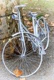 Romantisk gammal cykel i vit Royaltyfri Fotografi
