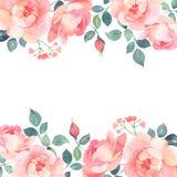 Romantisk garnering för rosvattenfärgbakgrund stock illustrationer