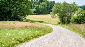 romantisk grusväg i land under blå himmel Royaltyfri Foto