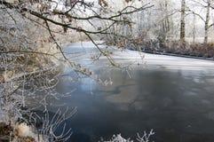 Romantisk isläggning på filialer, fryst flod, solig dag Royaltyfri Fotografi