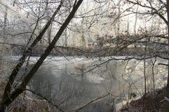 Romantisk isläggning på filialer, fryst flod, solig dag Fotografering för Bildbyråer