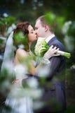 Romantisk kyssbrud och brudgum till och med lövverket Royaltyfri Bild