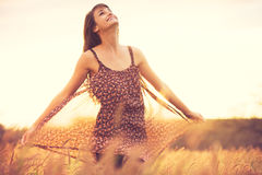 Romantisk modell i solklänning i guld- fält på solnedgången Arkivfoto